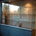 cabinet-glass6